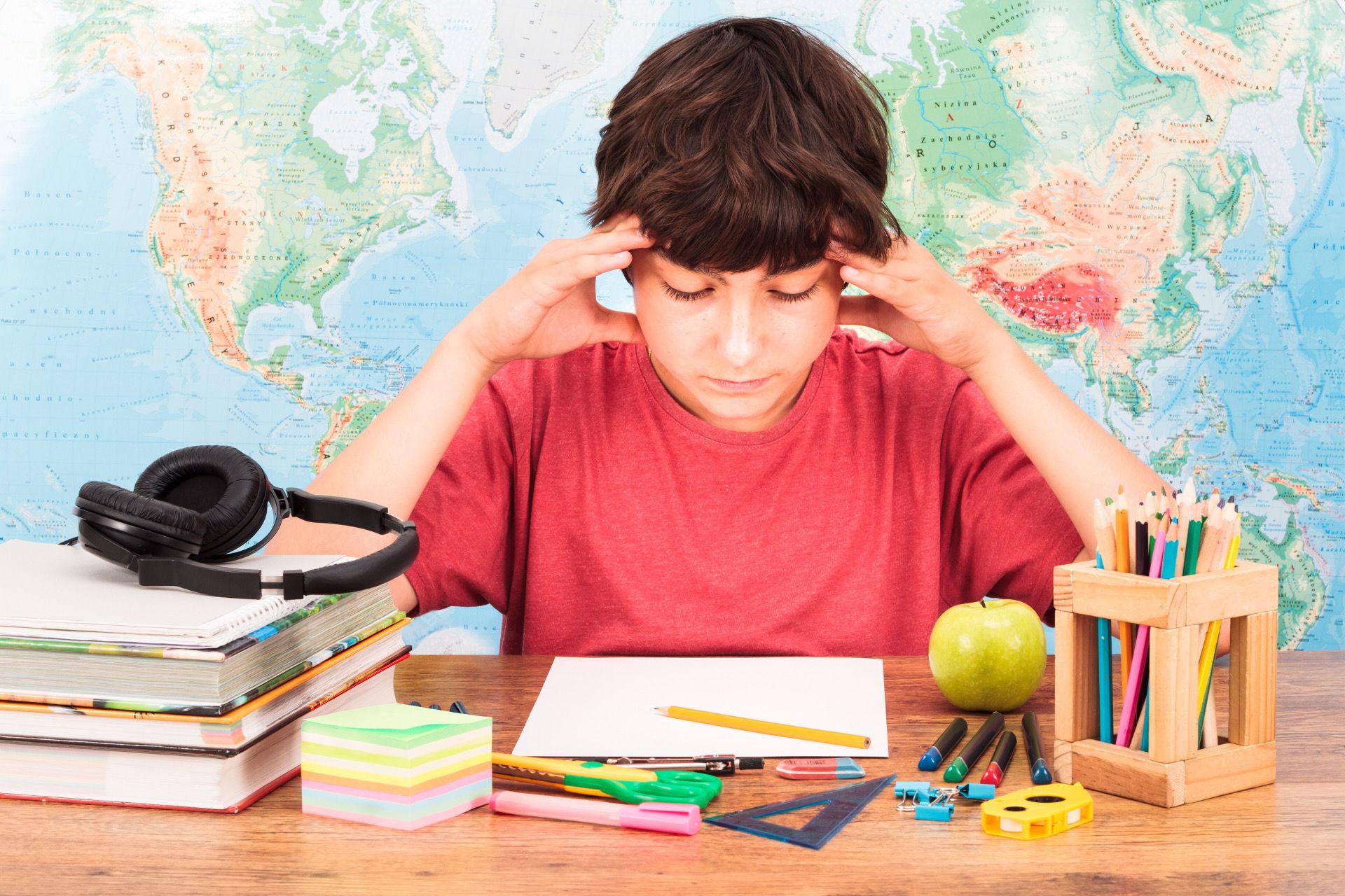 Neuroéducation: comprendre le cerveau pour mieux enseigner